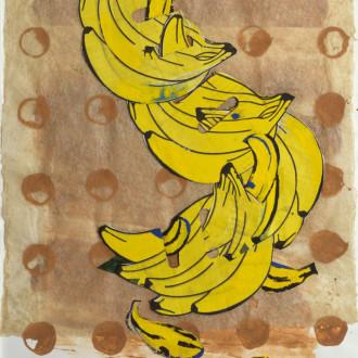 Bananas  1983 – 2013